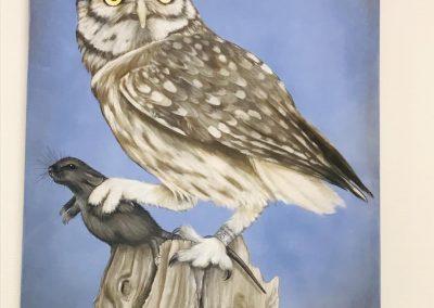 Paint Decoratieschilder Paneel Uil