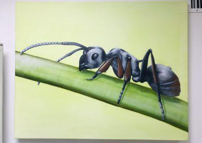 Paint Decoratieschilder Paneel Mier