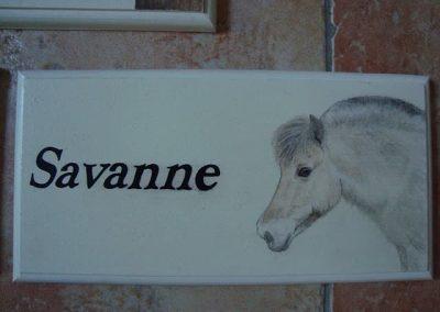 Paard naambordje