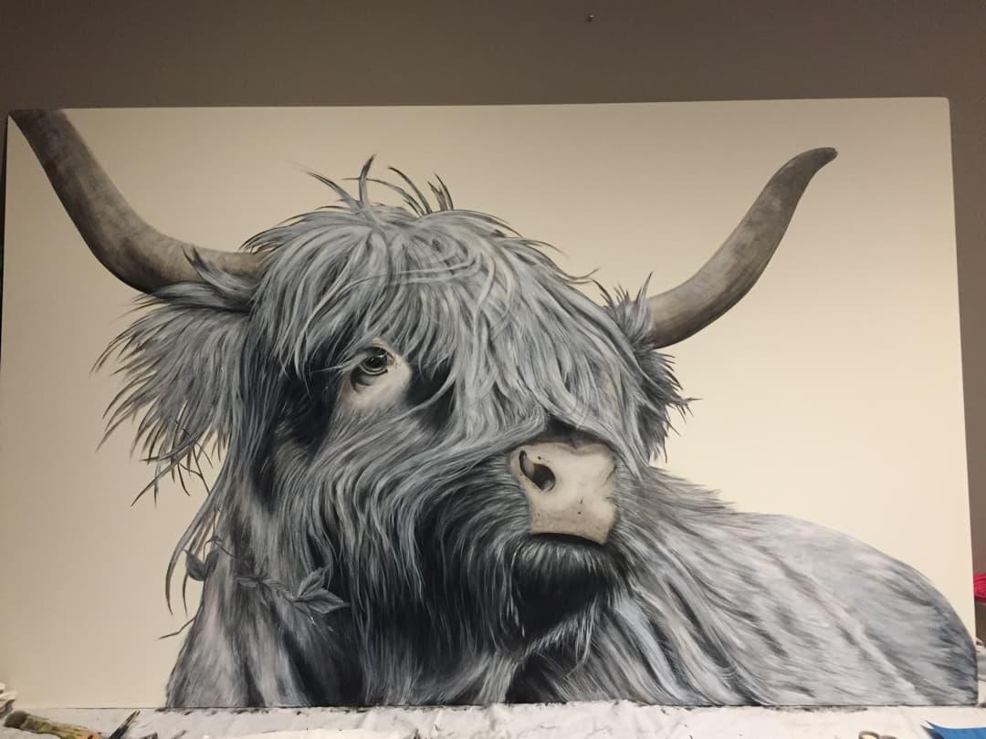 Muurschildering schotse hooglander